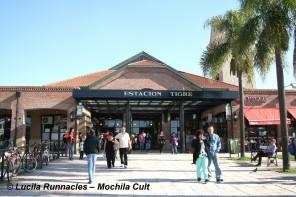 tigre museo del mate