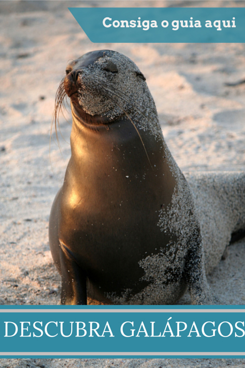 Vai para Galápagos?