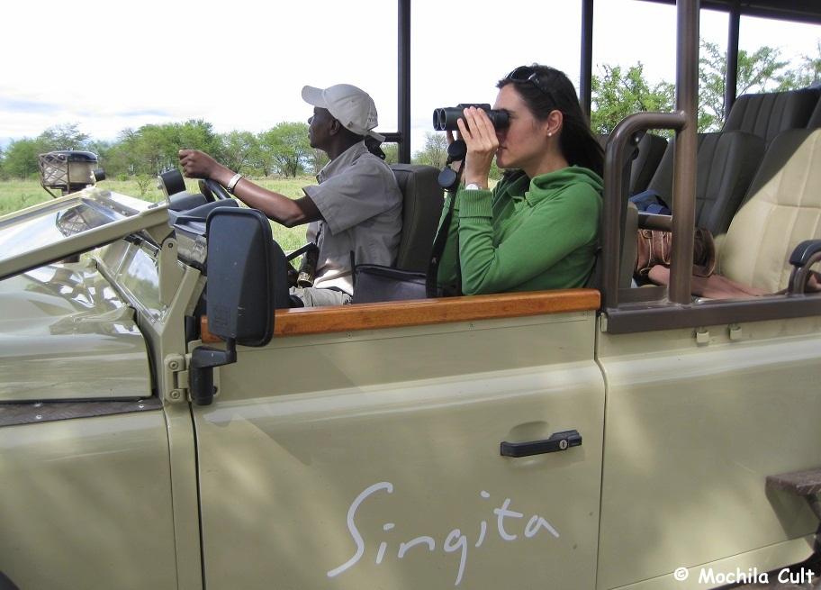 safari9 (5)